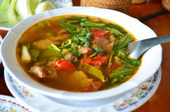 Thai northeast spicy soup Royalty Free Stock Photography