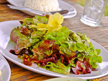 Thai northen mixed salad Royalty Free Stock Photos