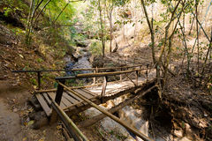 Thai Pai Pam Bok waterfall. Wooden bridge on the way to Pai Pam Bok waterfall hidden in jungle in north Thailand. Landscape of nature in south east asia during Stock Images