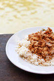 Thai panang curry with steamed rice Royalty Free Stock Images