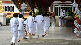 Thai people and children ordain as a nun and Brahmin for practice the dharma stock video