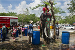 Thai people and foreigner travelers playing and splashing water with elephants and people in Songkran Festival at Ayutthaya Stock Photography