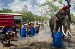 Thai people and foreigner travelers playing and splashing water with elephants and people in Songkran Festival at Ayutthaya Stock Photo