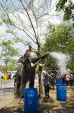 Thai people and foreigner travelers playing and splashing water with elephants and people in Songkran Festival at Ayutthaya. City on April 14, 2017 in Ayutthaya stock photo