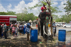 Thai people and foreigner travelers playing and splashing water with elephants and people in Songkran Festival at Ayutthaya. City on April 14, 2017 in Ayutthaya stock photos