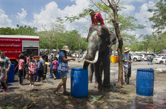 Thai people and foreigner travelers playing and splashing water with elephants and people in Songkran Festival at Ayutthaya Royalty Free Stock Images