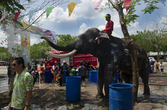 Thai people and foreigner travelers playing and splashing water with elephants and people in Songkran Festival. At Ayutthaya city on April 14, 2017 in Ayutthaya Royalty Free Stock Images