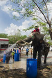Thai people and foreigner travelers playing and splashing water with elephants and people in Songkran Festival at Ayutthaya. City on April 14, 2017 in Ayutthaya stock image