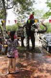 Thai people and foreigner travelers playing and splashing water with elephants and people in Songkran Festival at Ayutthaya. City on April 14, 2017 in Ayutthaya royalty free stock photography