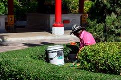 Thai people gardening at park Royalty Free Stock Images