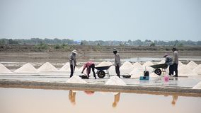 Thai people keeping salt from Salt farming stock footage