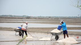 Thai people keeping salt from Salt farming stock video