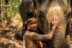 Thai people is mahout elephant for control elephant and for tour. Ism with elephants in Thailand. Outside of safari but in Thailand royalty free stock images