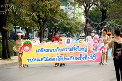 Thai people on the parade in ChiangMai Flower Festival 2013 Royalty Free Stock Photos
