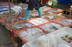 Thai people and travellers buy seafood from vendors seafood shop Royalty Free Stock Images