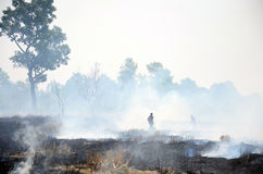 Thai People use branch and leaf extinguish Smoke and flames Royalty Free Stock Photography