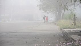 Thai People walking go to work in morning stock video footage