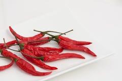 Thai Pepper Royalty Free Stock Photo