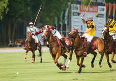Thai Polo Open 2013 in Pattaya, Thailand Stock Photography