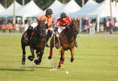 Thai Polo Open 2013 in Pattaya, Thailand Stock Image