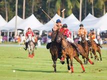 Thai Polo Open 2013 in Pattaya, Thailand Royalty Free Stock Image