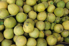 Thai pomelo Stock Images