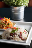 Thai Pork and Rice with Som Tum Stock Images