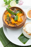 Thai Pumpkin Red Curry stock image