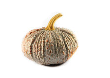 Thai pumpkin Royalty Free Stock Photo