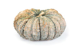Thai pumpkin Royalty Free Stock Images