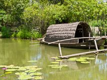 Thai punt in pond Royalty Free Stock Image