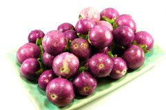 Thai purple eggplant Stock Images