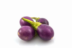 Thai purple eggplants or purple small brinjal. Thai purple eggplants or purple small brinjal on white background royalty free stock images