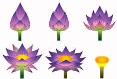 thai purpur stil för lotusblomma Arkivbilder