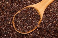 Thai Red Cargo rice Stock Photos