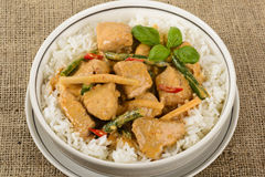 Thai Red Chicken Curry Stock Image