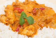 Thai Red Chicken Curry with Rice Stock Image