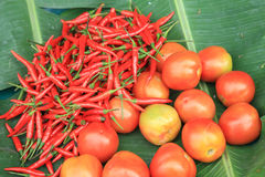 Thai Red Chili Peppers and tomatoes Stock Images