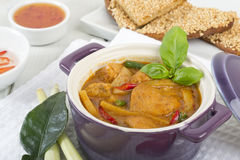 Thai Red Curry Stock Photography