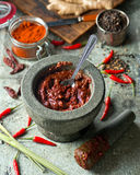 Thai Red Curry Paste. A delicious Thai red curry paste with mortar and pestle Royalty Free Stock Photography