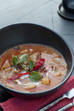 Thai red duck curry. stock photos