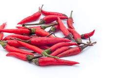 Thai red hot chilli on the white background, Red hot chilli isol Royalty Free Stock Photos