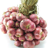 Thai red onion ingredient of thai food Royalty Free Stock Images