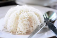Thai rice Stock Image