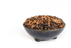 Thai rice berry seed. Stock Image