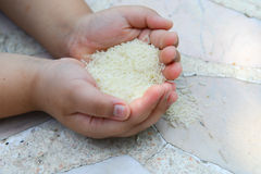Thai rice and little hand. Boy Stock Photography