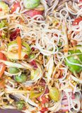 Papaya salad. Thai rice noodle papaya salad with pickled fish sauce Stock Photography