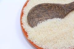 Thai rice seed Stock Image