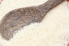 Thai rice seed Royalty Free Stock Image