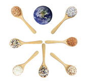 Thai rice serve the world.Elements of this image furnished by NASA Stock Image
